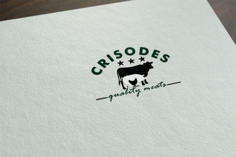 Logo Design Timisoara