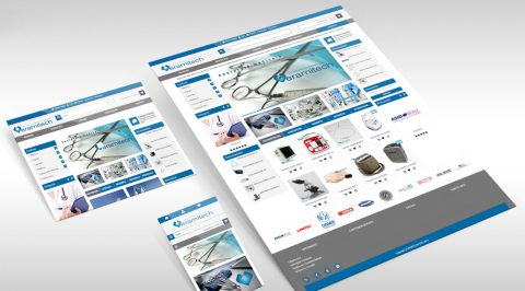 Web Design Veramitech